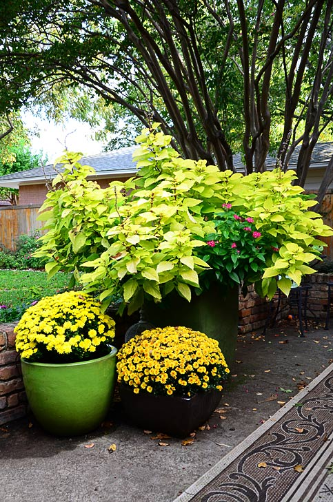 Seasonal Color Landscaping