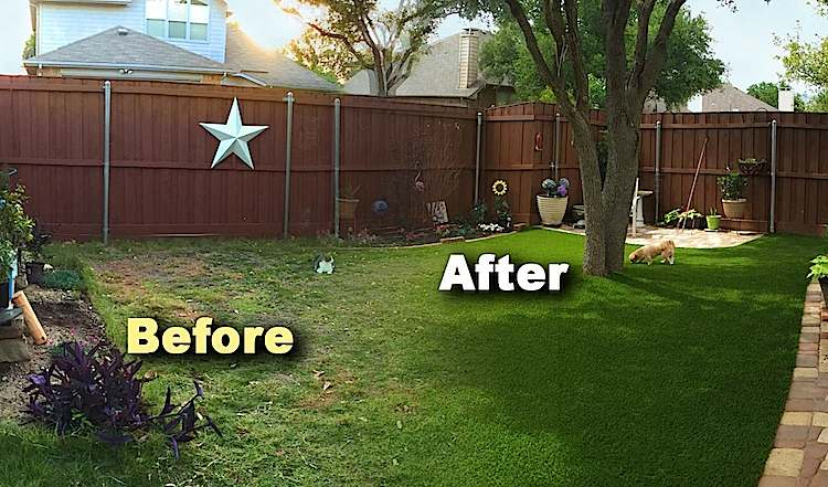 Before and After Installing Artificial Turf