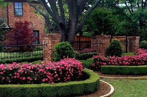 Lawncare for N. Dallas Home